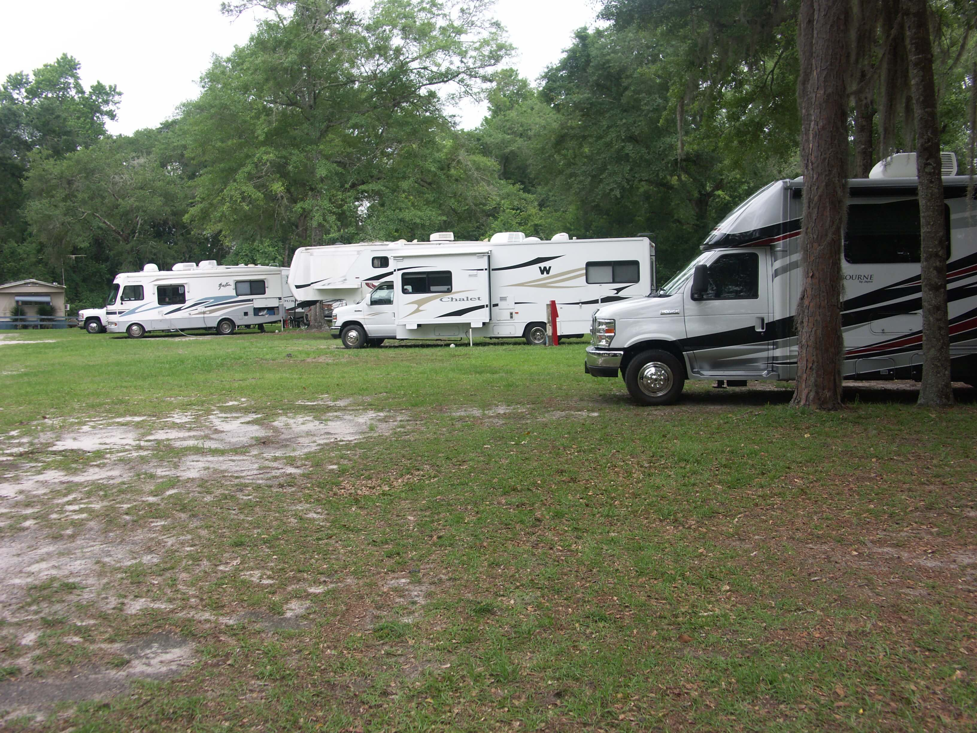 RV's at a campground